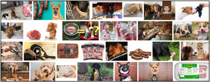04-Can-Dogs-Eat-Turkey-Necks-700x274 Can Dogs Eat Turkey Necks? How To Feed Your Friend Safely ** New