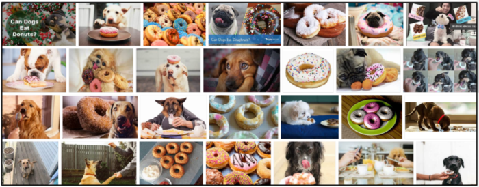 05-Can-Dogs-Eat-Donuts-700x274 Can Dogs Eat Donuts? A Sourceful Guide To Read About ** New