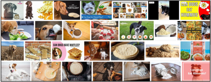 06-Can-Dogs-Eat-Flour-700x274 Can Dogs Eat Flour? Is It Safe For Them Or Not ** New