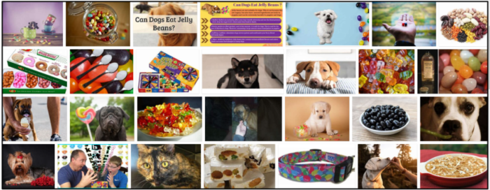 30-Can-Dogs-Eat-Jelly-Beans-700x272 Can Dogs Eat Jelly Beans? Answers To All Of Your Questions For A Healthy Diet ** New